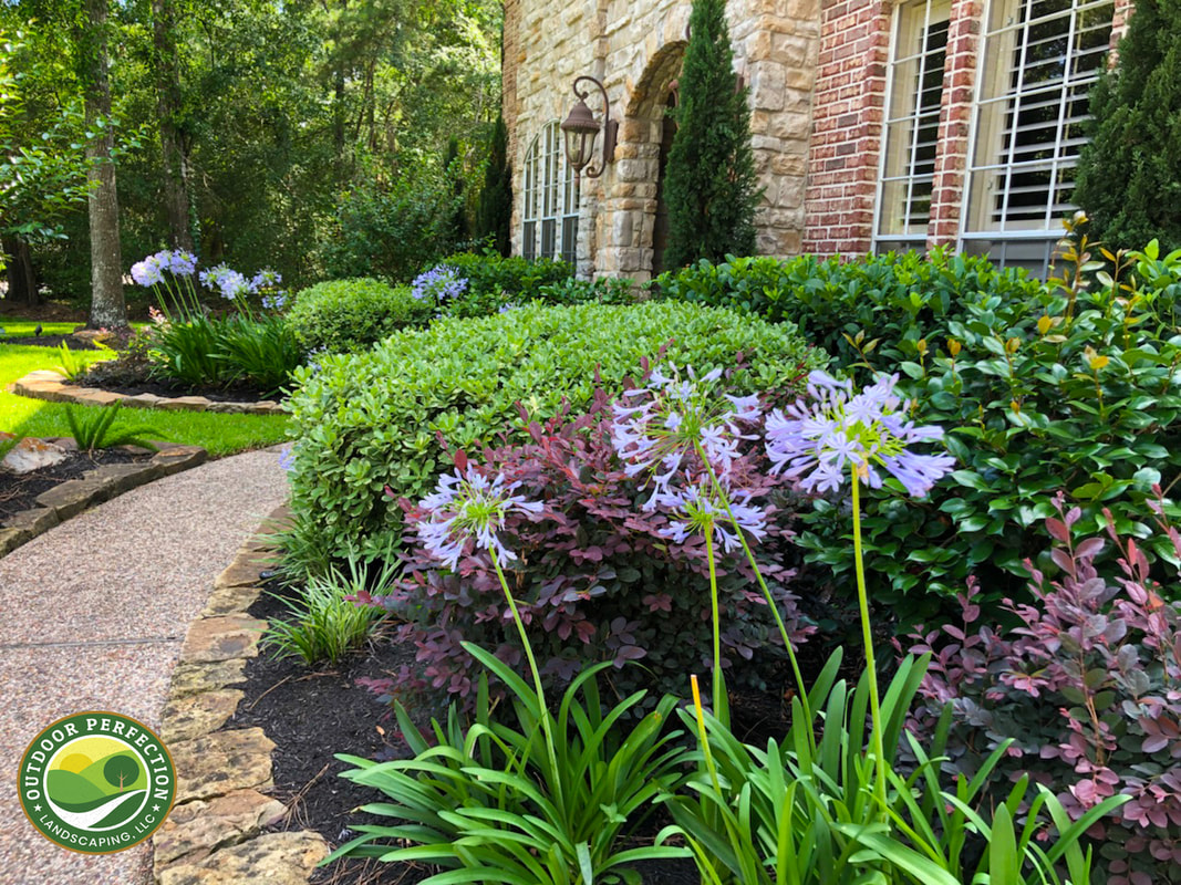 Outdoor Perfection Oplawns Com Landscape Design Landscaping Services Houston Spring Kingwood Katy